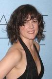 AMANDA PENNINGTON Photo - New York NY 12-02-2010Amanda Pennington at the premiere of RABBIT HOLE at The Paris TheatreDigital photo by Lane Ericcson-PHOTOlinknet
