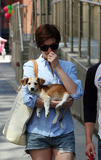 Adam Shulman Photo - June 15 2014 New York CityActress Anne Hathaway and her husband Adam Shulman take their dogs for a walk in Brookllyn on June 15 2014 in  New York City