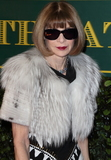 Anna Wintour Photo - London UK Anna Wintour at London Evening Standard Theatre Awards at the Theatre Royal Drury Lane Catherine Street London on Sunday 3rd December 2017Ref LMK73-J1239-041217Keith MayhewLandmark MediaWWWLMKMEDIACOM
