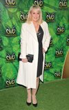 Albert Hall Photo - London UK  100118Nicki Chapman at the OVO by Cirque du Soleil press night Royal Albert Hall Kensington Gore10 January 2018Ref LMK315-MB1099-120118Can NguyenLandmark MediaWWWLMKMEDIACOM